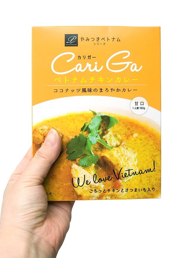 ベトナムチキンカレー - カリガー Cari Ga 【P4】 2 - 写真