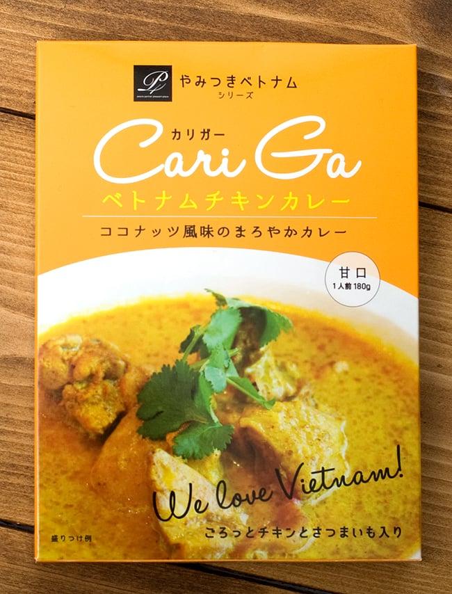 ベトナムチキンカレー - カリガー Cari Ga 【P4】の写真