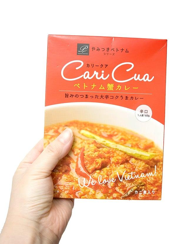 ベトナム 蟹カレー - カリークア Cari Cua 【P4】の写真2 - 写真