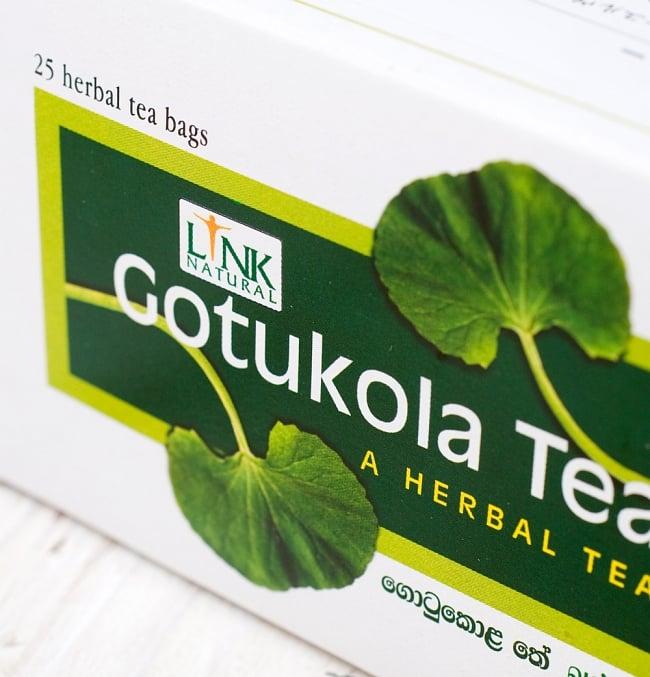 ゴトゥコラティー【ゴツコラティ】 - Gotukola Tea 【LINK NATURAL】 2 - パッケージの一部を拡大しました