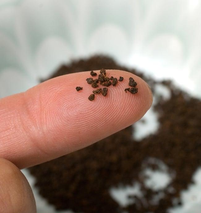 チャイ用紅茶- TATA TEA Premium CTC (袋入り)【250g】 6 - 指先に乗せてみました。茶葉がきれいにボール状になっていますね