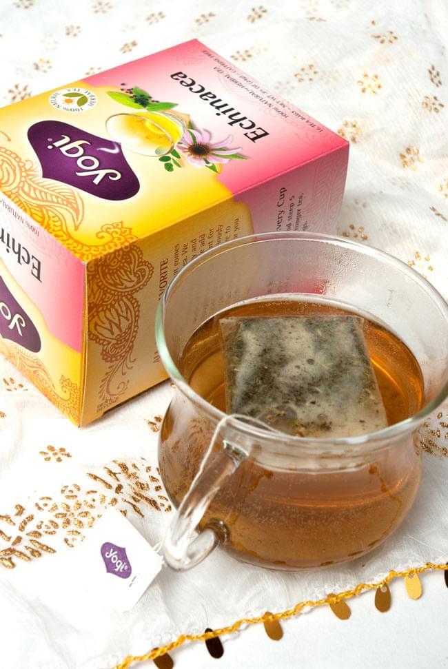 エキナセア【Yogi tea ヨギティー】の写真