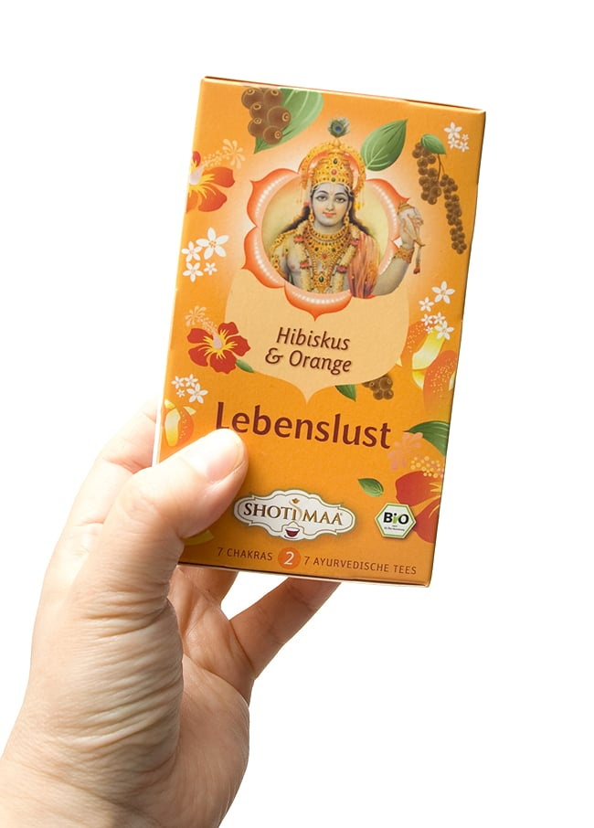 オーガニック ハーブ ティー  In the Mood ムードに包まれて 〜 ヴィシュヌ 〜 【Haris Treasure】 2 - インド的イケメンのヴィシュヌ。どうしてインドの神様は青白い方多いんでしょうか?