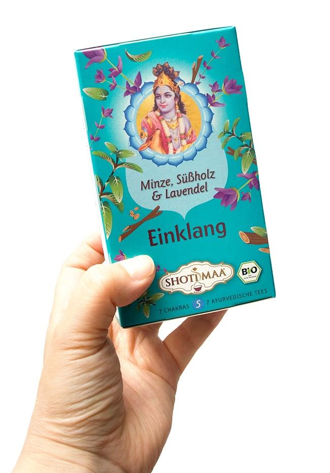 オーガニック ハーブ ティー Talk to Me 対話 〜 クリシュナ 〜 【Hari's Treasure】 2 - 甘いマスクとやさしい心でインドの女性を虜にするクリシュナ。美しく書かれてますね。