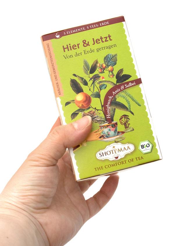 オーガニック ハーブ ティー Touch the Ground 〜Earth〜 〜母なる大地を感じて〜 【Haris Treasure】 2 - 手に持ってみました。1箱に16包入っています。もちろん個包装です。