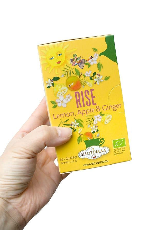 オーガニック ハーブ ブレンド ティー(lemon,apple&ginger) Life is beautiful 〜Rise〜【Haris Treasure】 3 - 手に持ってみました。1箱に16包入っています。もちろん個包装です。