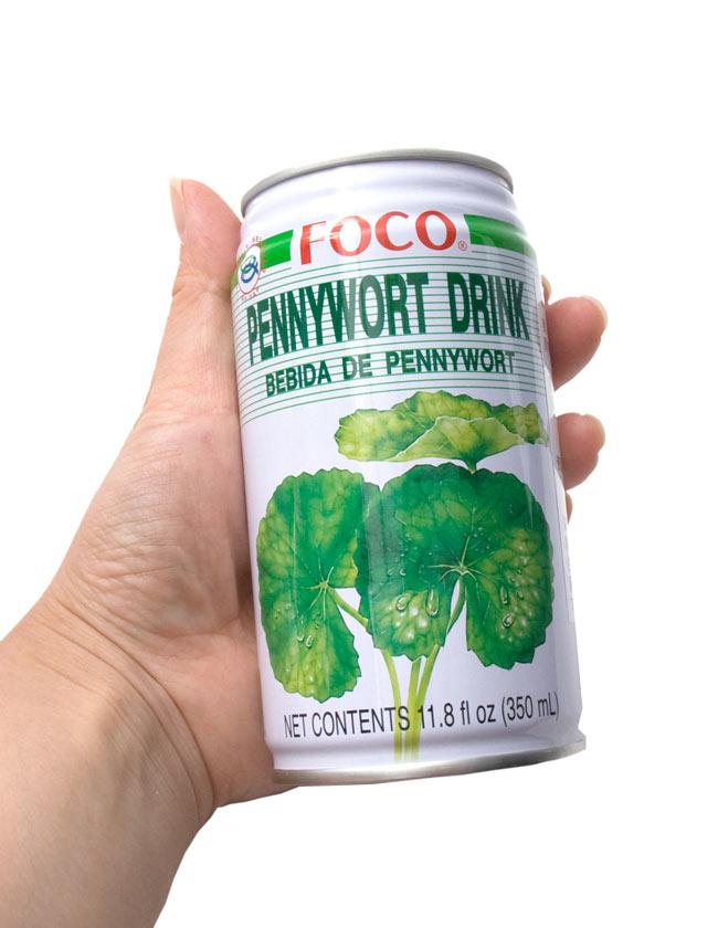 ペニーワートジュース 缶 [350ml] 【FOCO】 2 - 手に持ってみました
