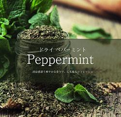 ペパーミント Peppermint【250gパック】(ID-SPC-108)