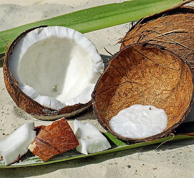 ココナッツファイン - Coconut Fine【500g袋入り】 5 - ココナッツは色々中たちで利用されている、南国の美味しい果実です。