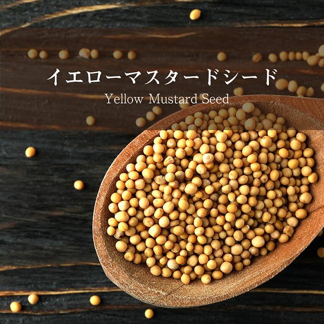 イエロー マスタード シード Yellow Mustard Seed 【500gパック】の写真1
