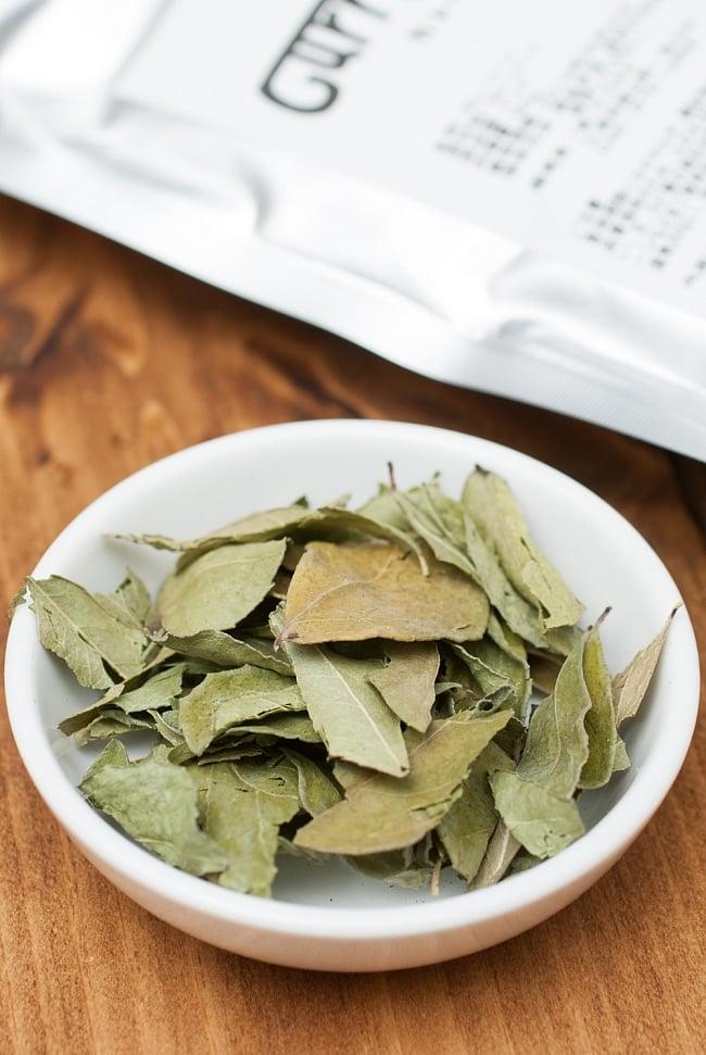 カレーリーフ Curry Leaves 【50gパック】(curry patta)の写真