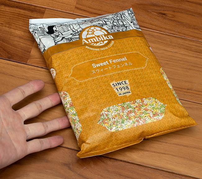 マウスフレッシュ スイート フェンネル - sweet fennel 【1kgパック】 6 - サイズ比較のために手と一緒に撮影しました