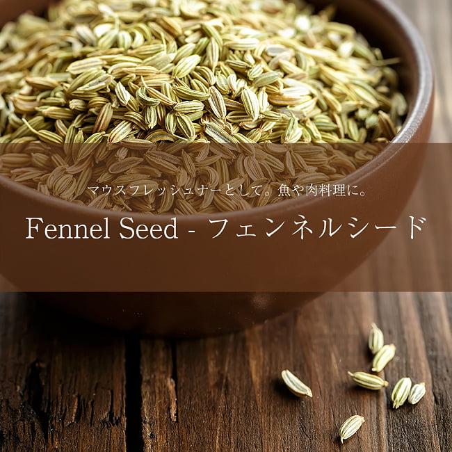 フェンネル シード - Fennel Seed 【500g 袋入り】の写真
