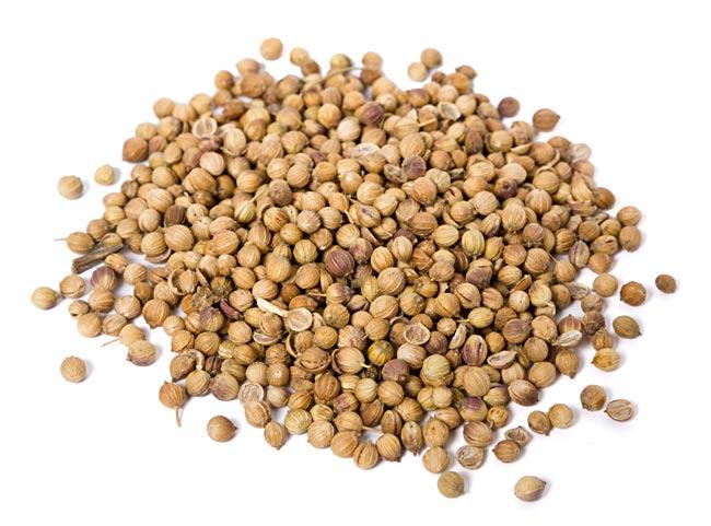 【オーガニック】コリアンダーシード - Corriander Seed 【20g】 2 - 有機・オーガニックコリアンダーシードです