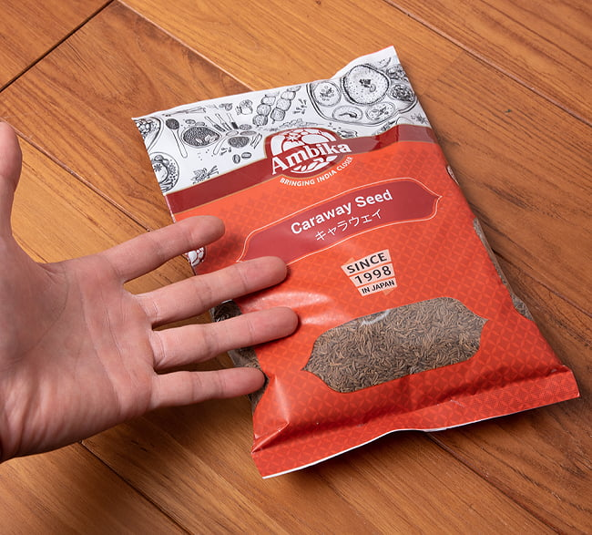 キャラウェイ - Caraway Seed 【500g 袋入り】 5 - サイズ比較のために手に持ってみました
