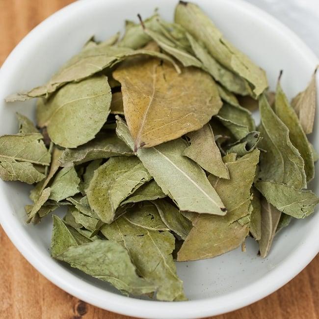 カレーリーフ - Curry Leaves 【5gパック】 2 - いがらっぽい香りが料理に奥行きを与えてくれます。