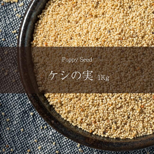 ケシの実 - Poppy Seed 【1kgパック】の写真