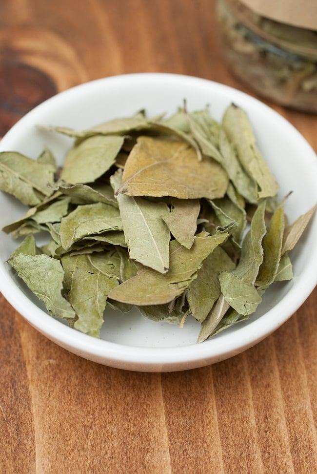 カレーリーフ - Curry Leaves 【10gボトル】 2 - 少しいがらっぽい香りが、料理にピシっと奥行を与えます