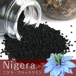 ニゲラ Nigela-ブラッククミン【100gパック】
