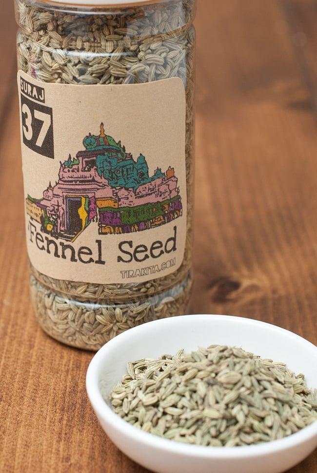 フェンネル シード - Fennel Seed 【100g】の写真