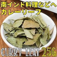 カレーリーフ - Curry Leaves 【25g袋入】(curry patta)