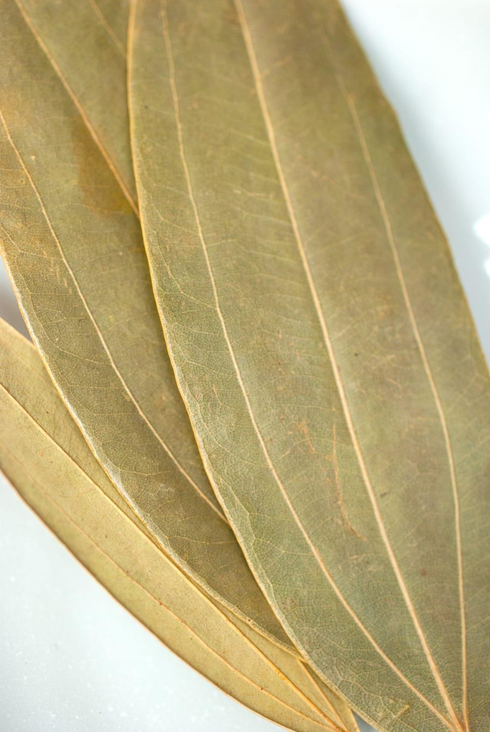インディアンベイリーフ(シナモンリーフ) 袋入り 【5g】 Bay Leaves 2 - シナモンの葉です。月桂樹とは、葉脈の走り方が違います。