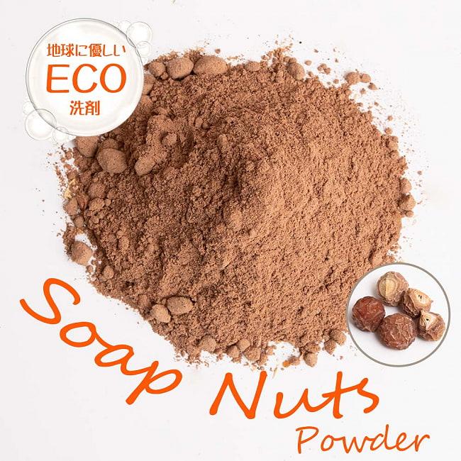 ソープナッツ - インドの天然エコ洗剤&石鹸(Aritha Powder)[250g]の写真