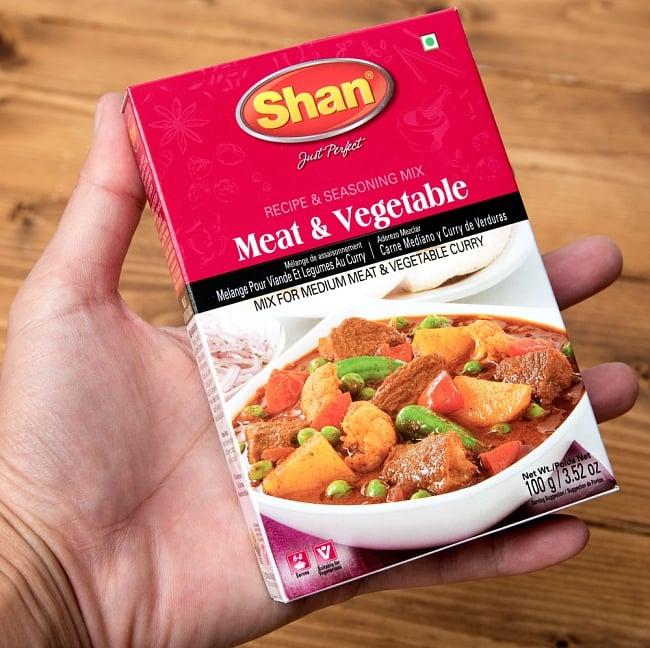 ミート&ベジタブル カレー スパイス ミックス - 100g【Shan】 6 - サイズ比較のために手に持ってみました