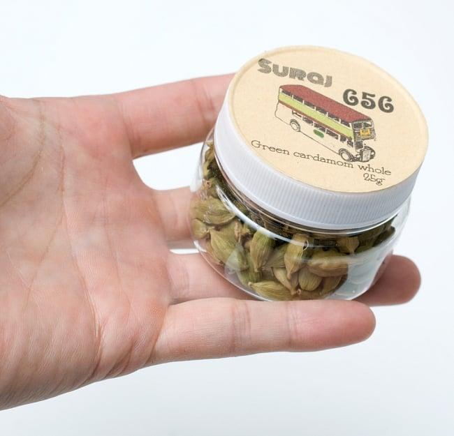 グリーンカルダモン ホール Green Cardamom Whole 【25g ボトル】 5 - サイズ比較のために手に持ってみました
