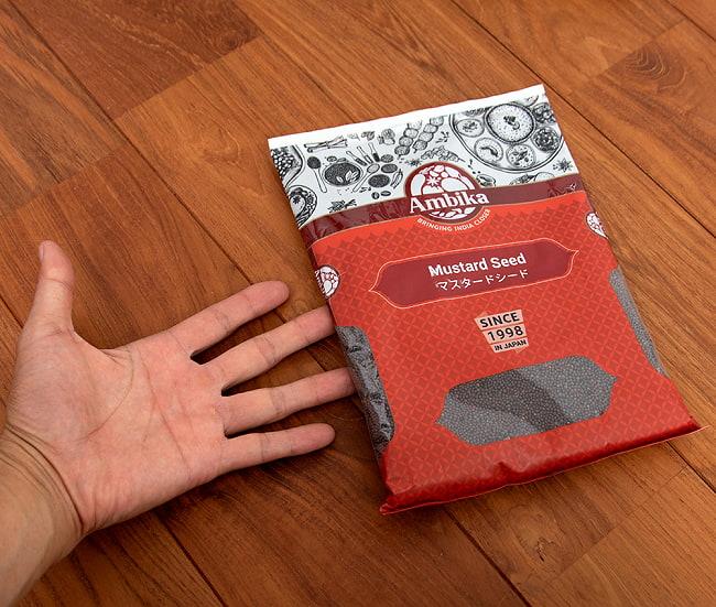 マスタードシード - Mustered Seed 500g 5 - サイズ比較のために手に持ってみました