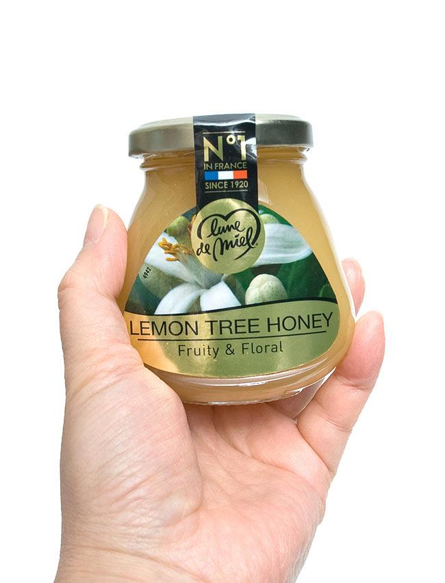ハチミツ レモンブロッサム 200g 【Lune de Miel】 2 - 手に持ってみました。かわいい瓶でいかにもはちみつな感じです。