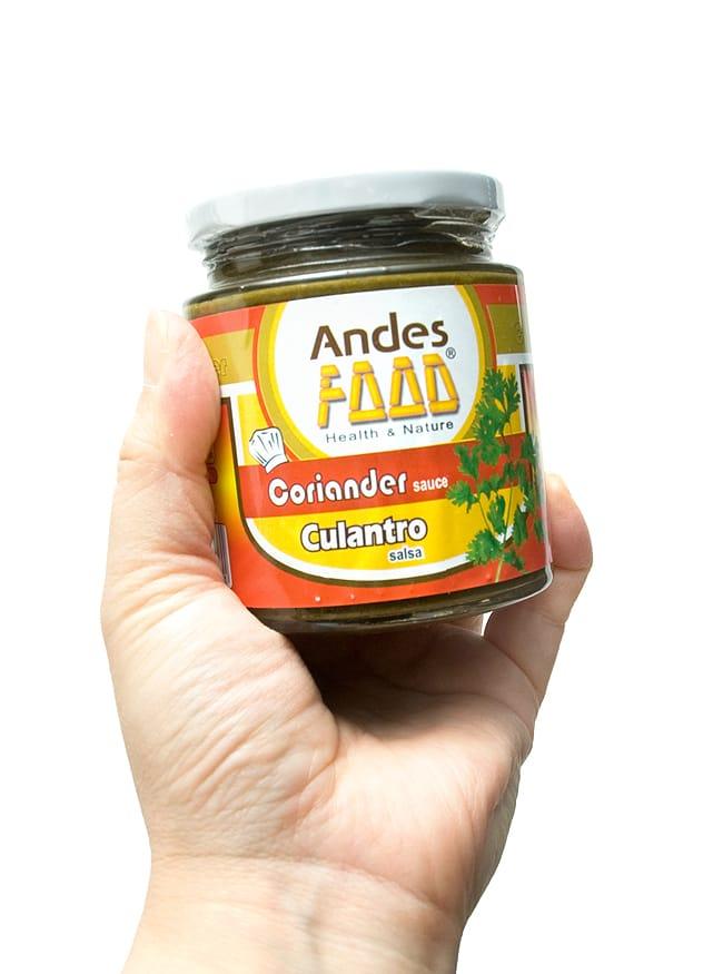 コリアンダーソース サルサ デ クアントロ- Culantro Salsa 220g 【Andes Food】の写真2 - 写真