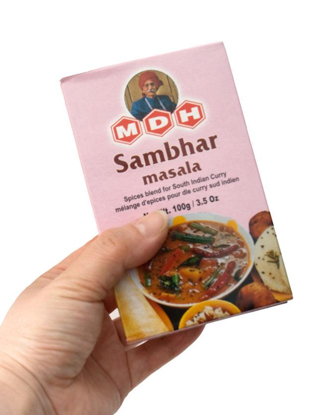 サンバル マサラ  スパイス ミックス - 100g 小サイズ 【MDH】 3 - 手に持ってみました。