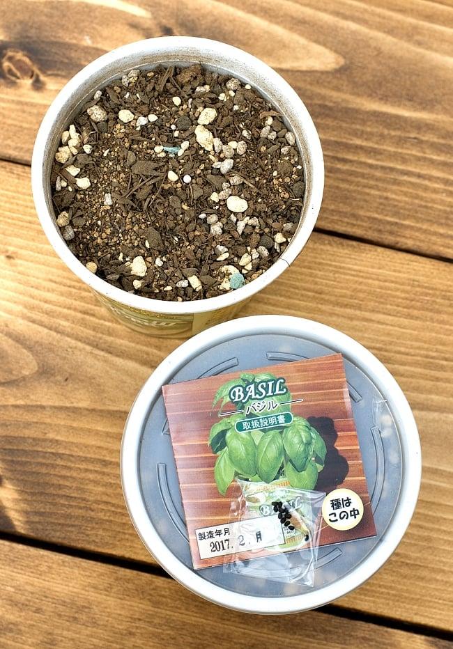 育てて食べられるカップサラダ。「ぼく、パクチー!」 - パクチー(コリアンダー)栽培キット【Forest】 3 - ポットに入った培養土と種子、栽培説明書がつています。こちらの写真は、同種類の別商品の写真です。お届けはパクチーになります。
