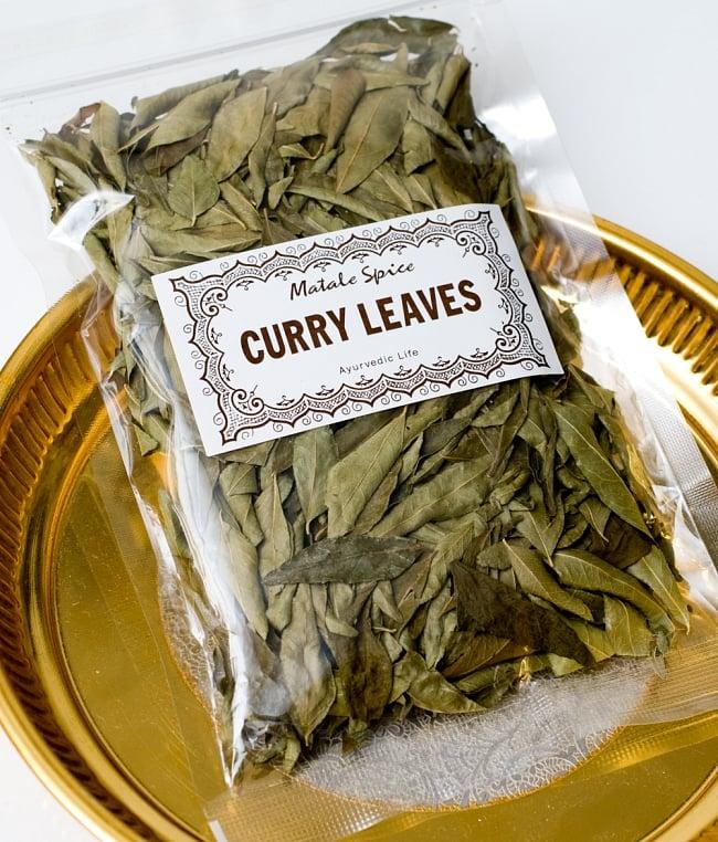 カレーリーフ - Curry Leaves 【10g袋入】(curry patta) 2 - パッケージ写真です