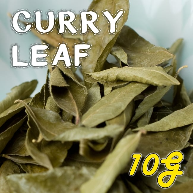 カレーリーフ - Curry Leaves 【10g袋入】(curry patta) 1