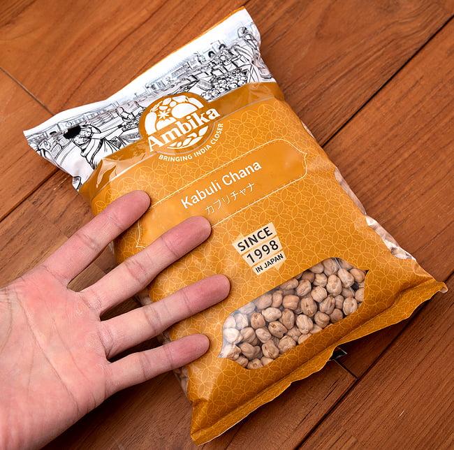 ひよこ豆(皮付き) - Kabuli Chana【1kgパック】 6 - サイズ比較のために手に持ってみました