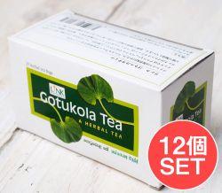 【12個セット】ゴトゥコラティー【ゴツコラティ】 - Gotukola Tea 【LINK NATURAL】
