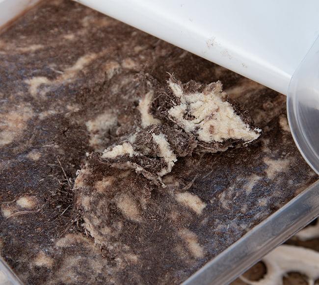 アラブのスイーツ ハルワ・シャミア - ゴマペースト チョコレート風味 200g  【LE MOULIN】 4 - 開けたときはぺたんとしていますが、スプーンで掘ると繊維質な感じのスイーツが現れます