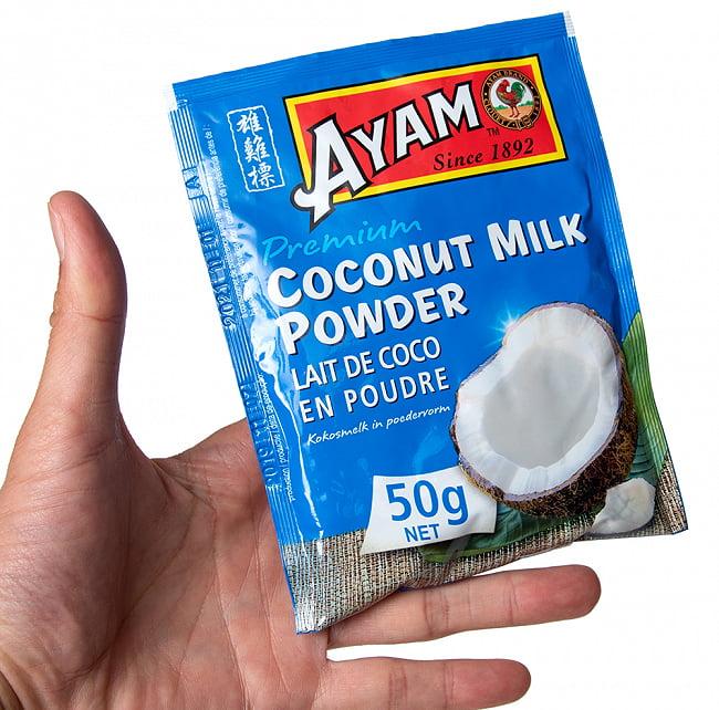 ココナッツミルク パウダー 50g - Coconut Milk Powder【AYAM】 3 - サイズ比較のために手に持ってみました