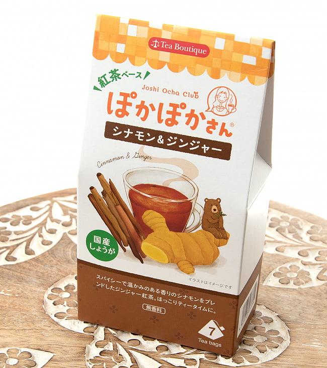 ティーブティック 女子お茶倶楽部 ぽかぽかさんのレモン&ジンジャー 【Tea Boutique】 2 - 斜めから