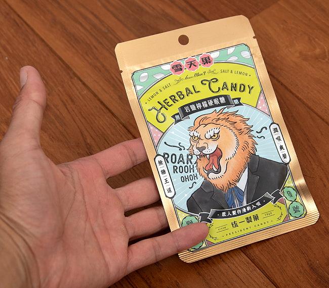 雪天果 岩鹽檸檬硬喉糖 - 台湾のハーバルキャンディ ソルト&レモン風味 5 - サイズ比較のために手に持ってみました