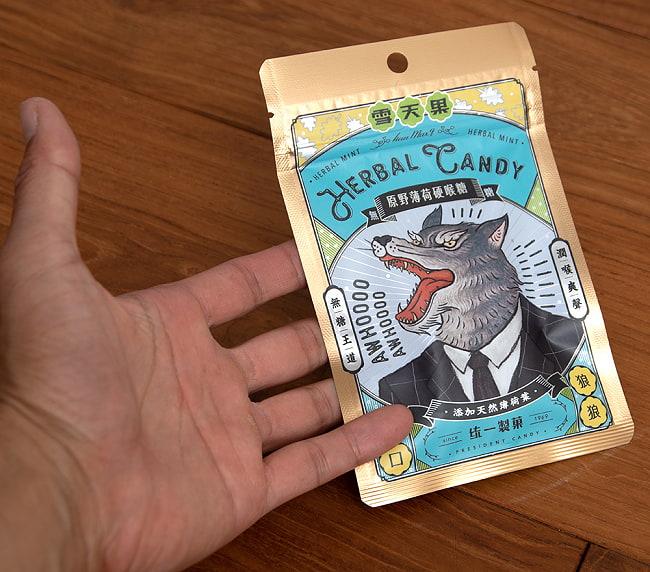 雪天果 原野薄荷硬喉糖 - 台湾のハーバルキャンディ ハーバルミント風味 5 - サイズ比較のために手に持ってみました