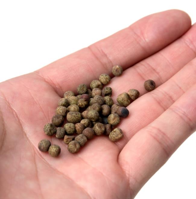 えんどう豆 - Small Green Peas - ケラウ 【1kg】 2 - 手にとってみました