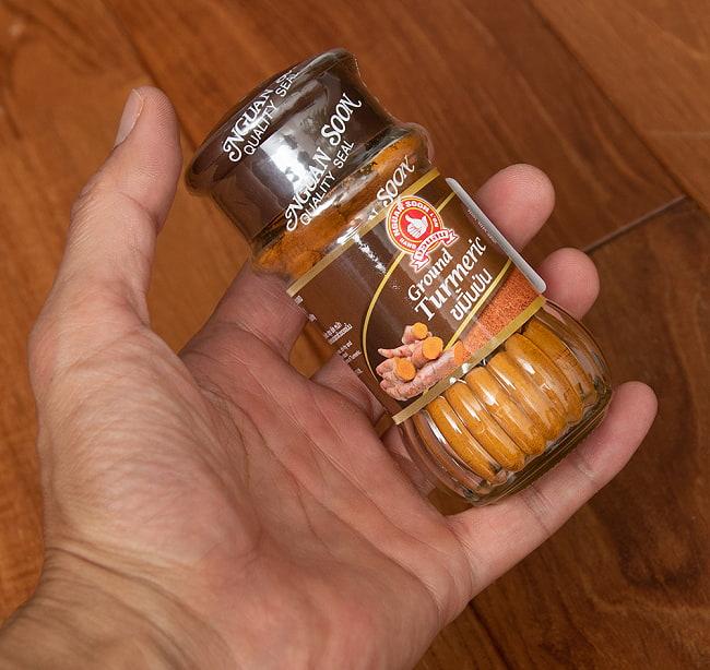ターメリックパウダー Turmeric Powder タイ産【50gボトル】 4 - サイズ比較のために手に持ってみました