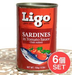 【6個セット】サーディン - いわしのトマト煮 チリ味 - SARDINES in Tomato Souce Chilli Added[155g]