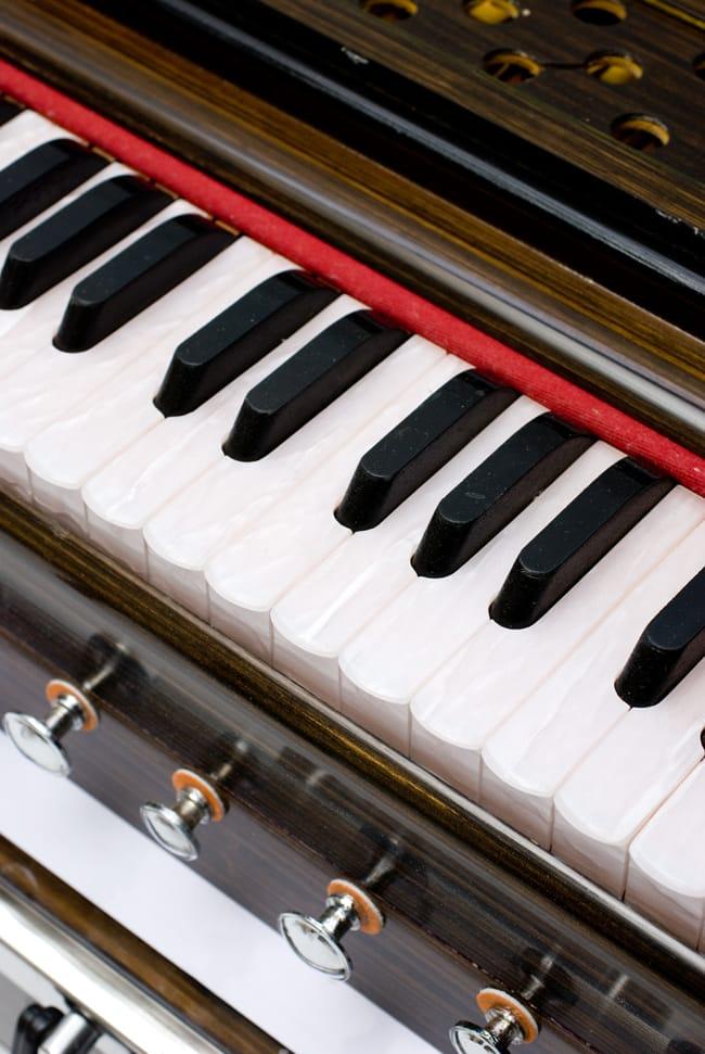 【Kartar Music House社製】ポップアップハルモニウム 2 - 鍵盤部分の拡大です