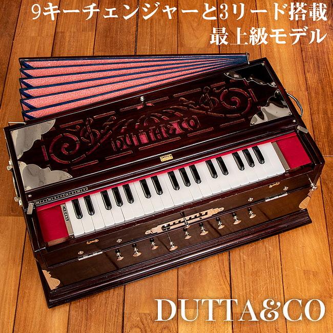 【DUTTA&CO社製】9スケールチェンジャータイプ 37key ハルモニウム(高級品)の写真