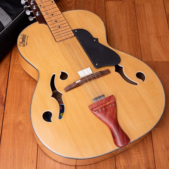 インドのスライド・ギター モハーンヴィーナ 2 - ボディの部分の拡大です