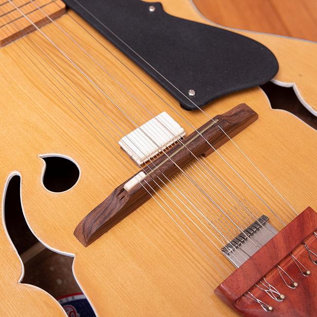 インドのスライド・ギター モハーンヴィーナ 6 - ソフトケースが付属します